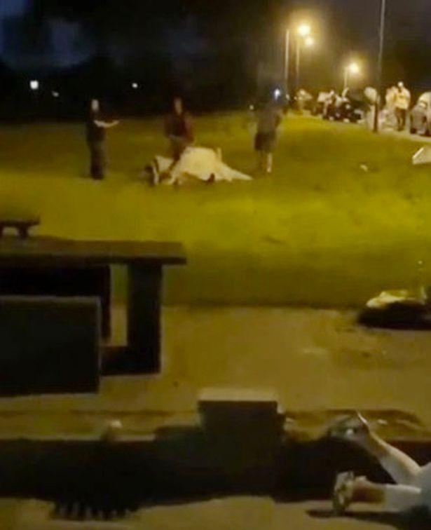 VIDEO Mladenka nasrnula na gosta dok je žena kraj njih nepomično ležala